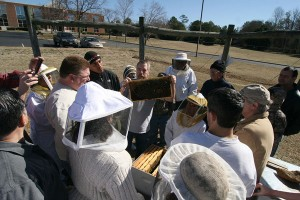 Chatham County Beekeeping School
