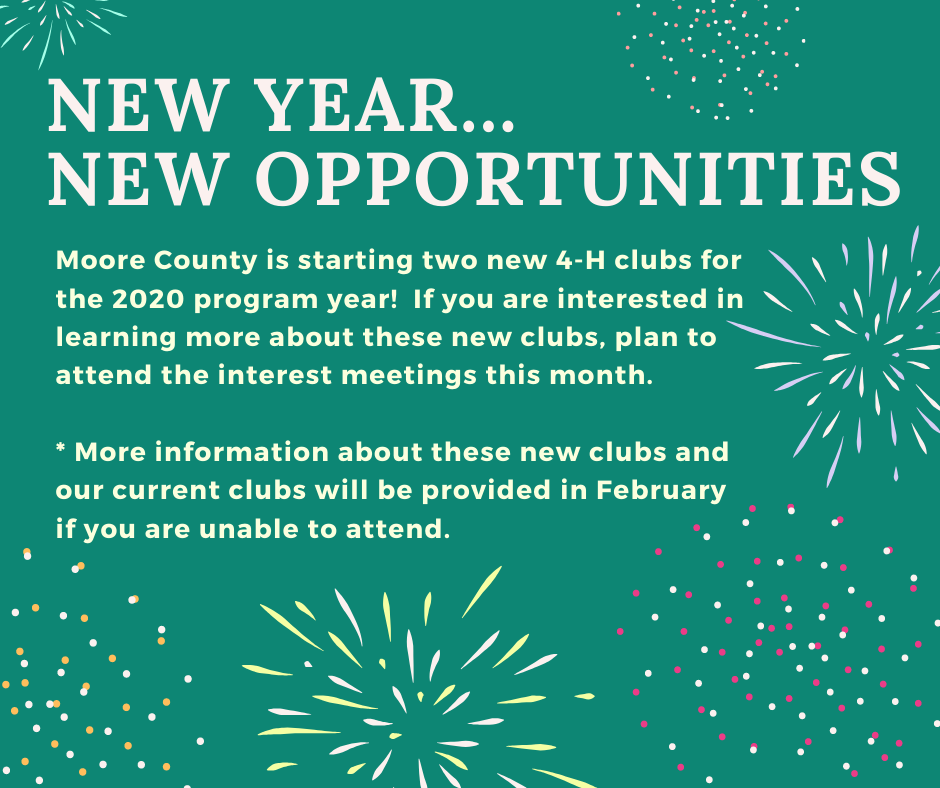 New Year.... New Opportunities 4-H Flyer