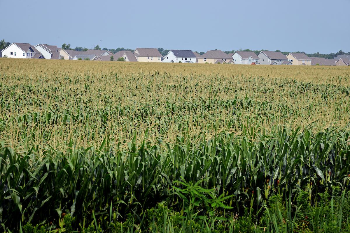 Homes bordering farmland